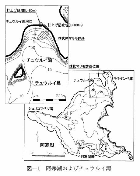 阿寒湖にあるマリモの群生地の地図