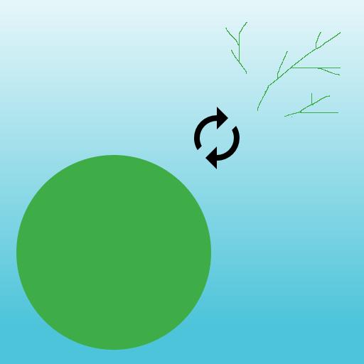 マリモのライフサイクル