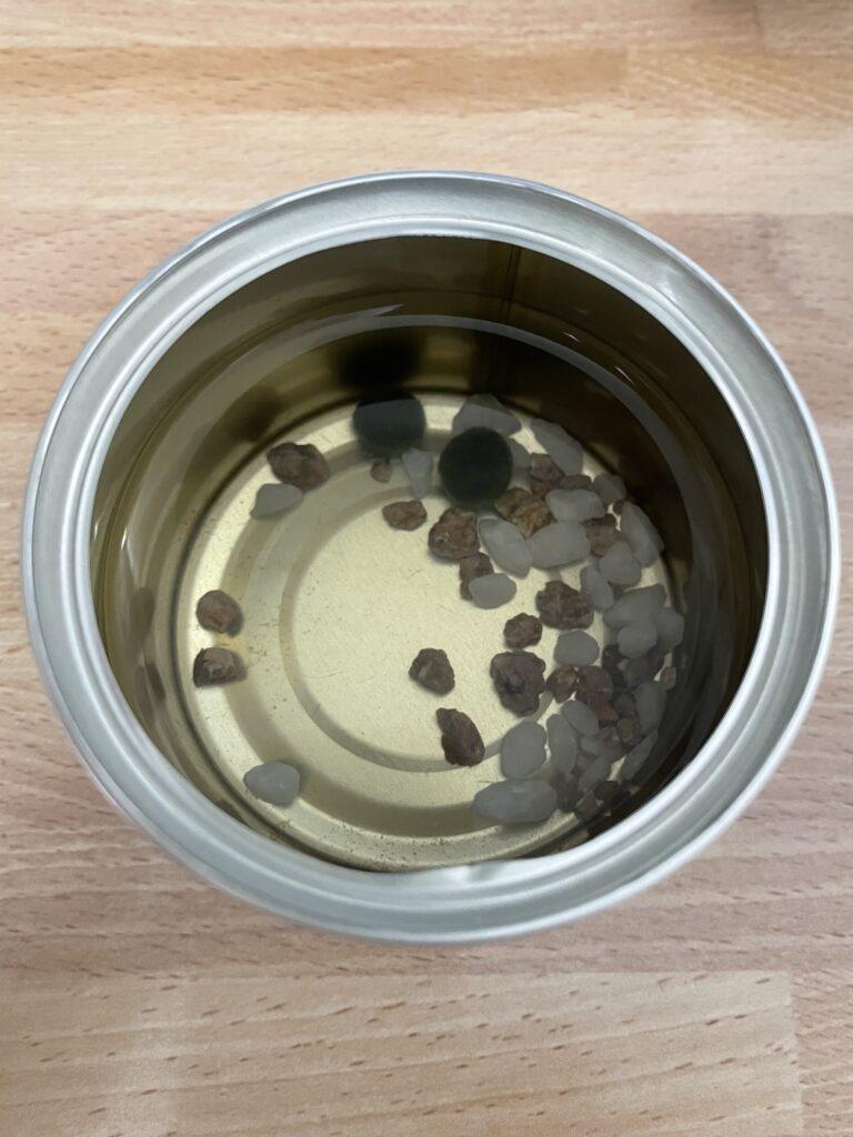 マリモの缶詰の中身 マリモとミネラルを含む石
