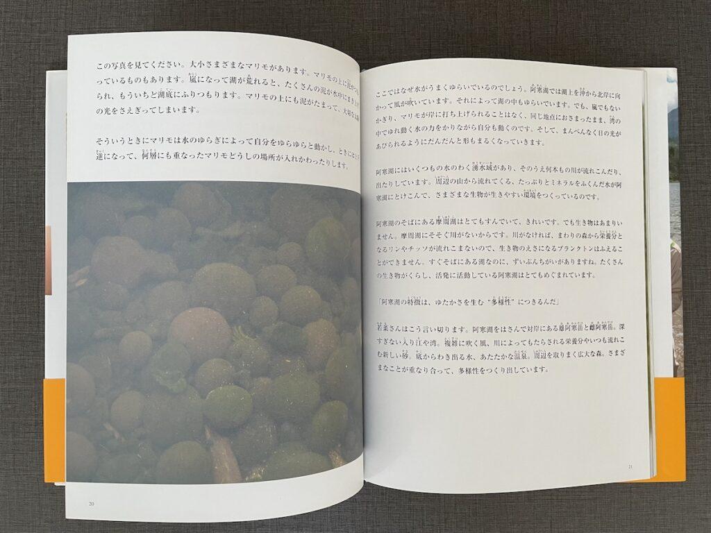 マリモを守るのページに掲載されたマリモの写真と解説